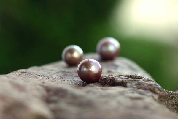Kasumigaura-Yuki-Perlen-13