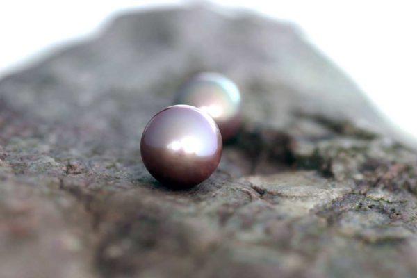 Kasumigaura-Yuki-Perlen-14